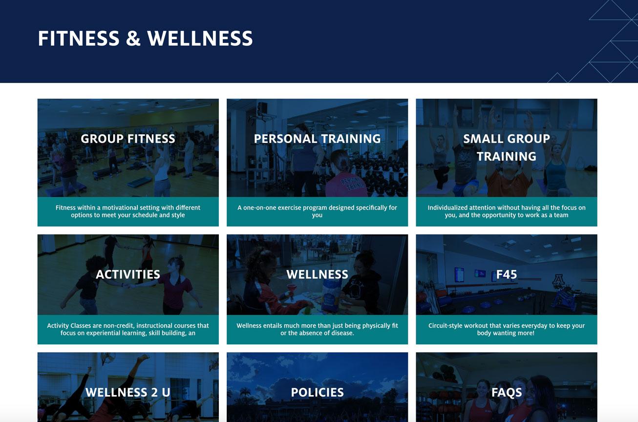 Screenshot of Fitness & Wellness link tiles