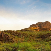 Sonoran desert landscape photo by Frankie Lopez